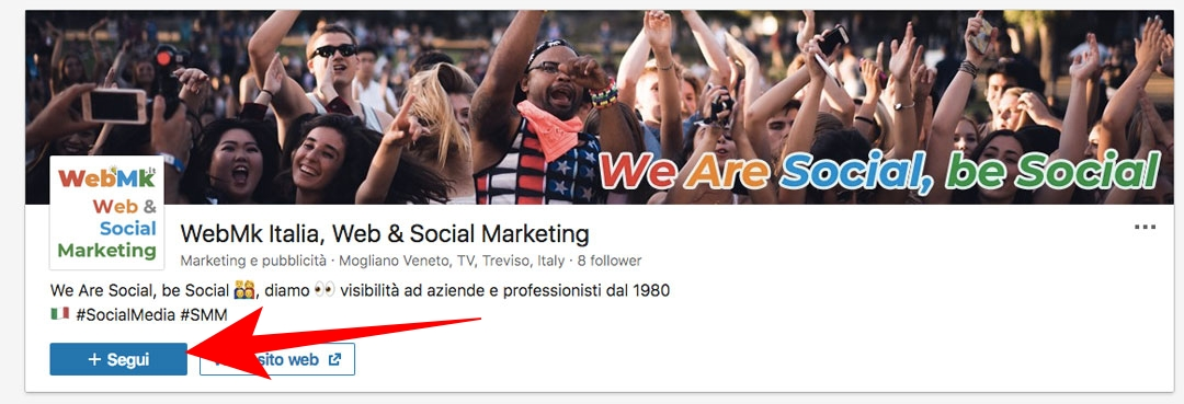 "Seguiteci sulla nostra pagina LinkedIn ""webmktalia"""
