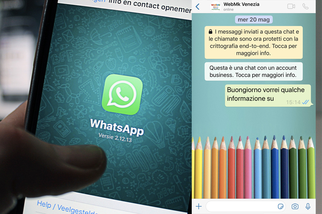 WhatsApp Business l'opinione !